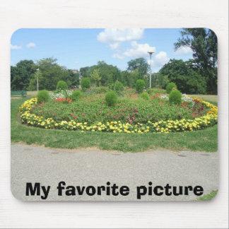 sånger pic's1 022, min favorit- bild musmatta