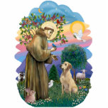 Sanktt Francis och gult Labrador Acrylic Cut Out