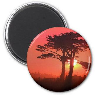 Santa Cruz Sahara Magnet