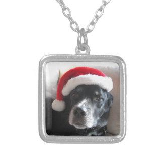Santa Hund-Labrador Rottweiler blandning Silverpläterat Halsband