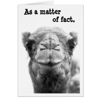 Sarkastiskt & roligt kort för kamelfotostudenten
