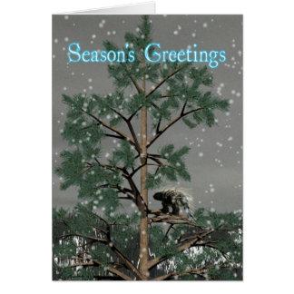 Säsong hälsningar - Porcupine i ett grästräd Hälsningskort