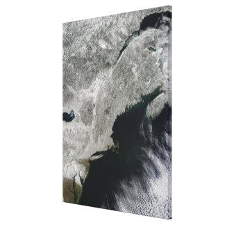 Satellit- beskåda av snö canvastryck