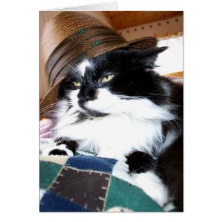 Sats Kat i hatt OBS Kort