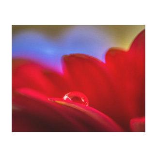 Sätt enkelt en liten droppe för makropic-vatten på canvastryck