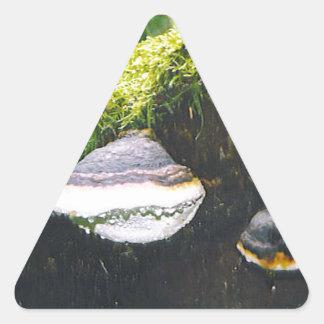 Saturn champinjoner triangelformat klistermärke