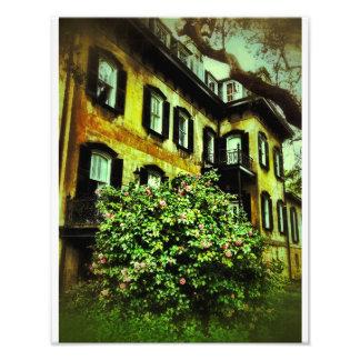 Savannahhus på den Gaston gatan Fototryck
