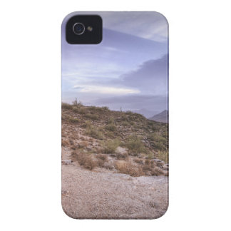 Sceniska Arizona Case-Mate iPhone 4 Fodral