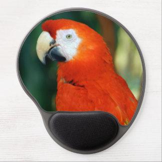 Scharlakansröd Macaw Gel Musmatta