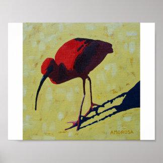 Scharlakansröda Ibis Poster