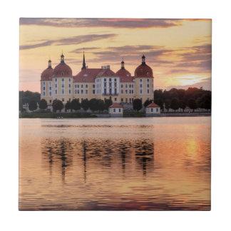 Schloss Moritzburg Kakelplatta
