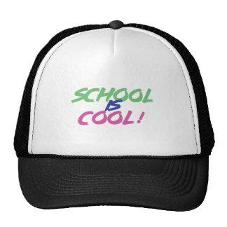 SCHOOL ÄR KALL - utbildning, studenter Keps