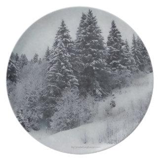 Schweizare pläterar - snöig skogen tallrik