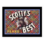 Scottys för skotsk Terrier bäst hund Vykort