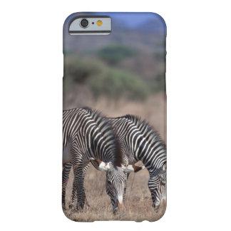Sebra Barely There iPhone 6 Skal