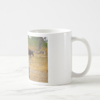 Sebra och Ostrich TomWurl.jpg Kaffemugg