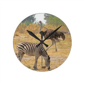 Sebra och Ostrich TomWurl.jpg Rund Klocka