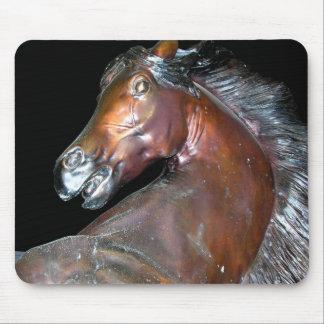Sedona Arizona hästkonst Musmatta