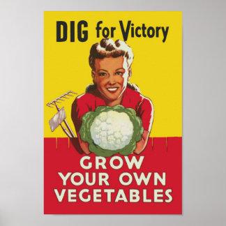 Segerträdgård Affisch