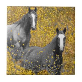 Senap och hästar kakelplatta