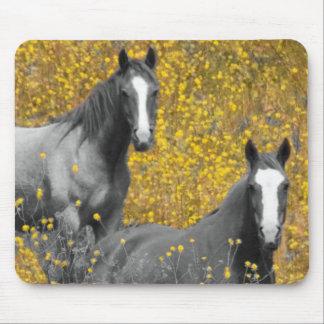 Senap och hästar musmatta