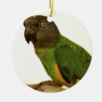 Senegal papegojaprydnad julgransprydnad keramik