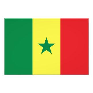 Senegal - senegalesisk flagga fototryck