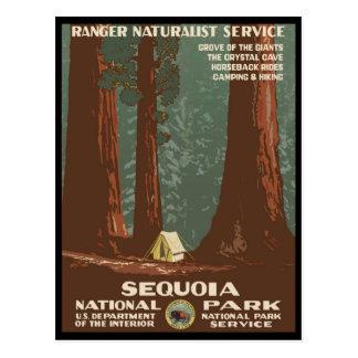 Sequoianationalpark Vykort