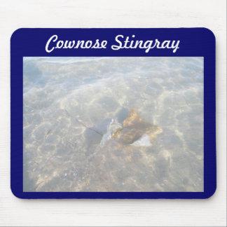 Serie för Cownose Stingray OBX Musmatta