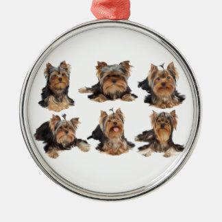 Sex hundar julgransprydnad metall