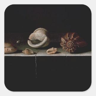 Sex snäckor på en stenhylla, 1696 fyrkantigt klistermärke