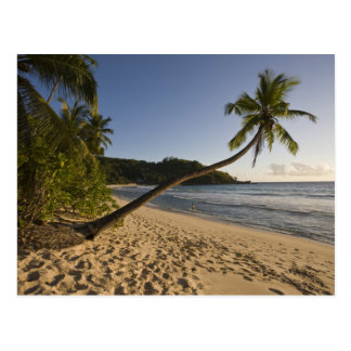 Seychellerna Mahe ö, Anse Takamaka strand, Vykort