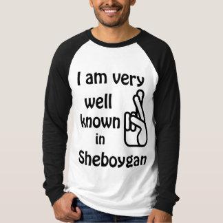 Sheboygan Wisconsin rolig välkänd RaglanTshirt Tee Shirt