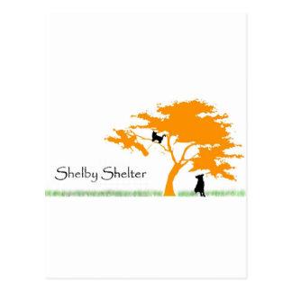 Shelby skydd vykort