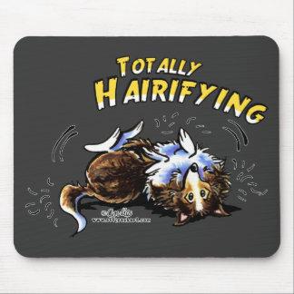 Sheltie totalt Hairifying Musmatta