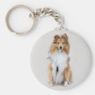 Shetland Sheepdog, för hundfoto för sheltie Rund Nyckelring