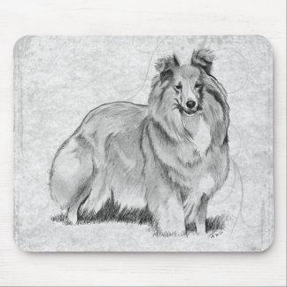 Shetland Sheepdog Musmatta