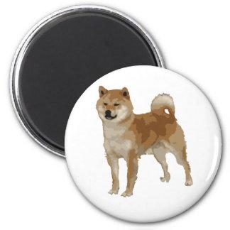 Shiba Inu hund Magnet