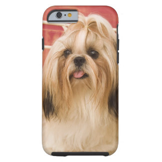 Shih-tzu hund tough iPhone 6 skal
