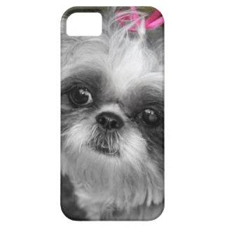 Shih Tzu hundiPhone 5/5S iPhone 5 Hud