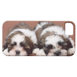 Shih Tzu iPhone 5 Cover