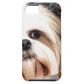 Shih Tzu Tough iPhone 5 Fodral