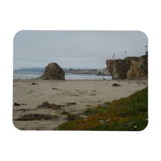 Shoreline för klippaAlong Pismo strand Magnet