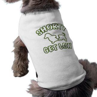 Shorty får låg tax husdjurströja