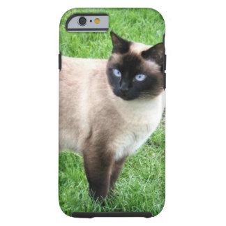 SIAMESE SKÖNHET TOUGH iPhone 6 CASE