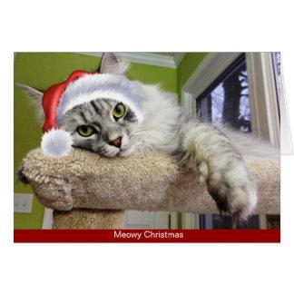 Siberian kattjulkort OBS kort