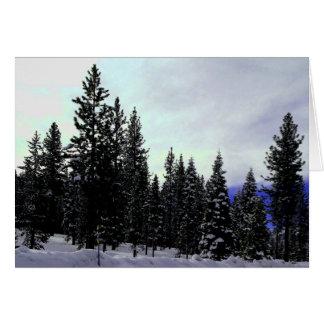 Sierra Nevada vinter Hälsningskort