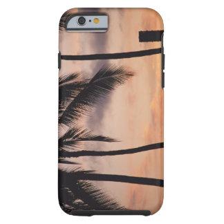 Signalera och palmträdet tough iPhone 6 skal