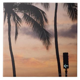 Signalera och palmträdet keramiska plattor
