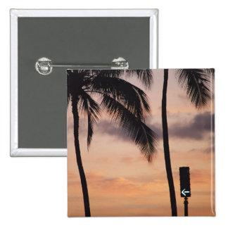 Signalera och palmträdet knapp